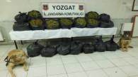 Yozgat Jandarma 100 kilo 420 gram esrar ele geçirdi