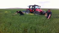 Çiftçi Kayıt Sisteminde son başvuru tarihi 30 Haziran