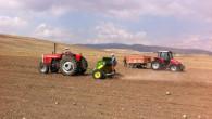 Yozgat'ta Aspir ekimine başlandı