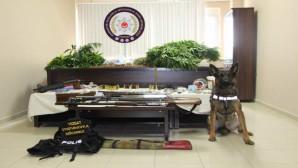 Evinin bahçesinde uyuşturucu madde üreten şüpheli tutuklandı