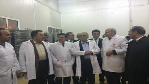 Bakan Fakıbaba'dan süt üretcilerine müjde