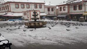 Duyarlı vatandaşlar kuşları unutmadı