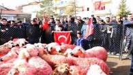 Yozgatlı çobanlar, 41 kınalı koyunu Mehmetçiğe gönderdi