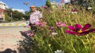 Çiçek sevgisini iş yerinin önünü çiçek bahçesine çevirerek gösterdi