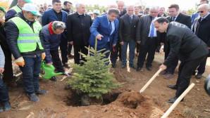 Yozgat'ta Bin 500 fidan dikimi yapıldı