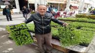 Yozgat'ta fide çeşitleri tezgahtaki yerini aldı