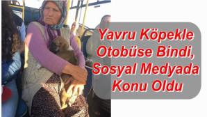 Yaşlı kadından örnek davranış