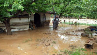 Yozgat'ta sağanak yağış sele dönüştü 600 tavuk telef oldu
