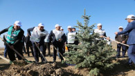 Yozgat'ta 286 Bin 655 fidan toprakla buluştu