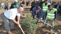 Yerköy'den 11 Milyon Fidan kampanyasına destek