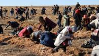 """""""Yunusla Can Bulalım projesi"""" ile 600 fidan toprakla buluştu"""