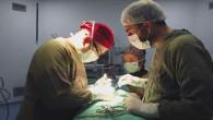 Op. Dr. Akkurt, hasta kabüne başladı