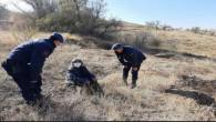 Kaybolan yaşlı kadını Jandarma buldu