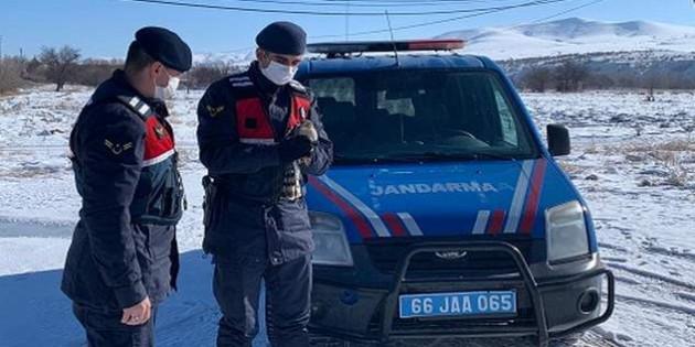 Jandarma kırsalda bulduğu Atmaca'yı teslim etti