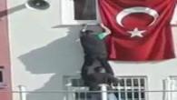 Öğrenciler, tehlikeye aldırmadan bayrağı düzeltti