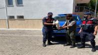 Jandarma, yaralı leyleğe sahip çıktı