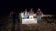 Jandarma, 70 küçükbaş hayvanı bularak sahibine teslim etti