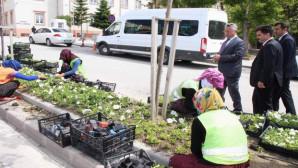 Yozgat'ın cadde ve sokakları çiçek açtı