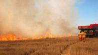 Tuzlacık: Anız yangını toprağın verimini düşürür
