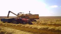 Boğazlıyan Ziraat Odası: Buğday fiyatları beklenenin altında