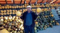 Çiftçiler yol kenarlarına açtıkları tezgahlarda kavunları tüketmeye çalışıyor