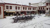Vatandaşlar, yiyecek bulmakta güçlük çeken güvercinleri yemliyor