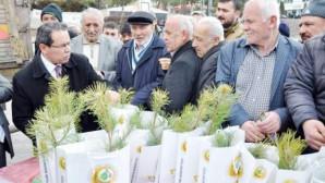 Vatandaşlara 5 Bin adet fidan dağıtıldı