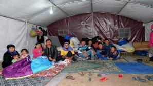 Mevsimlik tarım işçileri çadırlarına yerleşti