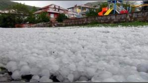 Yozgat'ta 25 köy ceviz büyüklüğündeki doludan zarar gördü