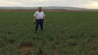 Yozgat'ta nohut tarlalarında koruyucu ilaçlama çalışması başladı