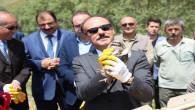 3 bin 500 kınalı keklik doğaya salındı