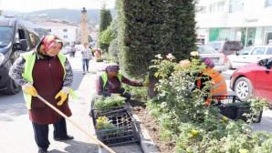 Yozgat Belediyesi şehrin caddelerini 150 Bin çiçekle donatıyor