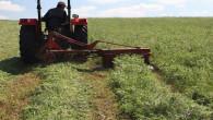 Toprak İşlemesiz Tarımda Macar Fiği hasadı yapıldı