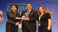 Türkiye Mükemmellik Ödülü ÇEDAŞ'ın