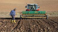 Yozgat'ta 9 köyde deneme amaçlı Yerli buğday ekimi yapıldı