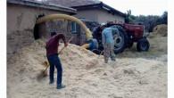 Çiftçiler, hayvanları için saman teminine başladı