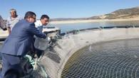 Türker: Çekerek, su ürünleri yatırımı açısından büyük bir potansiyele sahip