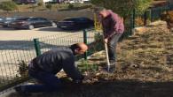 Site bahçesine ağaç dikerek 11 Milyon Fidan kampanyasına destek oluyorlar