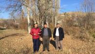 Yetişmiş bir söğüt ve kavak ağacı yıllık 100 ton su tüketiyor