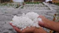Yozgat'ta dolu ekili tarım alanlarına zarar verdi