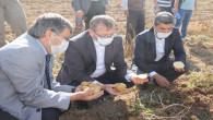 Yozgat'ta patates hasadı yapıldı