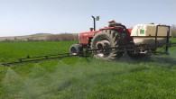 Çiftçiler, zirai ilaçlama çalışmasına başladı