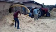 Kuraklık saman fiyatlarını da artırdı